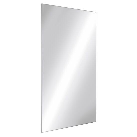 DELABIE vandálbiztos tükör, ütésálló rozsdamentes acéllemez, 595*980 mm, könnyen szerelhető 10 mm vastag megerősített PVC hátlap
